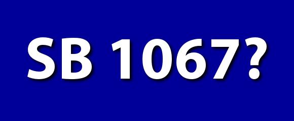 SB 1067: Reasons Behind the Holding of SB 1067 by Rep. Lynn M. Luker