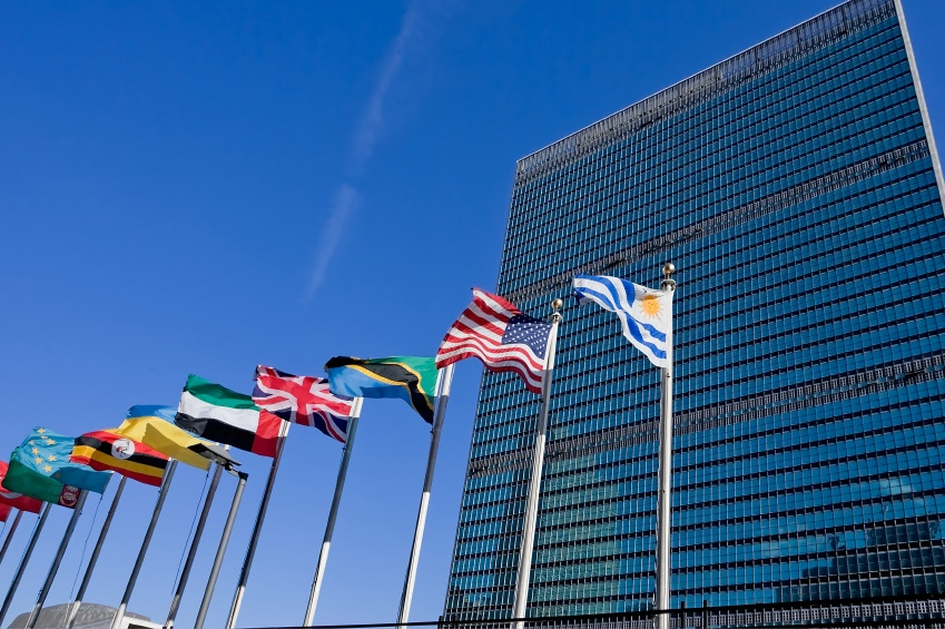 Letter to the Editor – Concerns about the UN