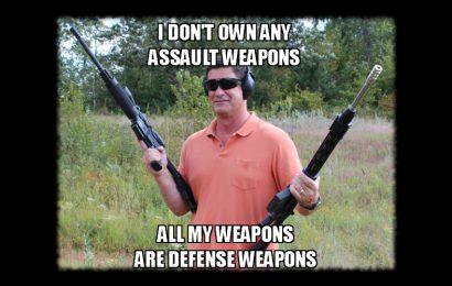 Ban Stupid Politicians not 'Assault Weapons'