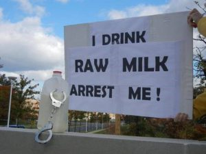 raw_milk