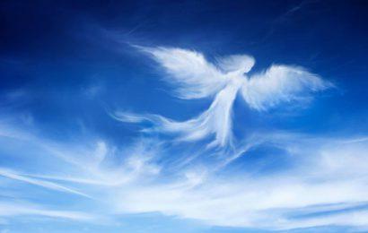 Trump's not an Angel, but…