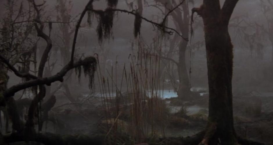 Idaho has its Own Swamp that Needs Draining
