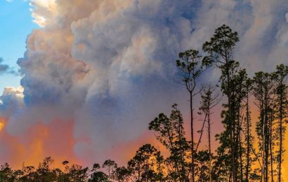 Wildfires ravage 3.2 million acres in 2017, and it's only July