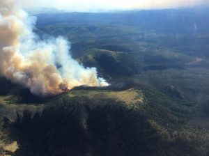 Southwest Alaska Fires