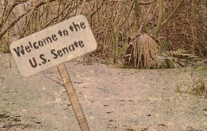 Senate swamp creatures playing politics with public lands management