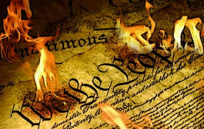 States Ignoring the Constitution & Rules of Naturalization