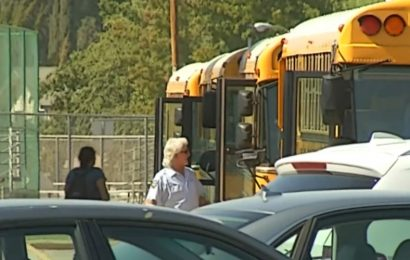 Insight into School Safety Relating to Shootings