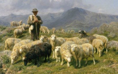 Mother America…the Shabby Shepherd