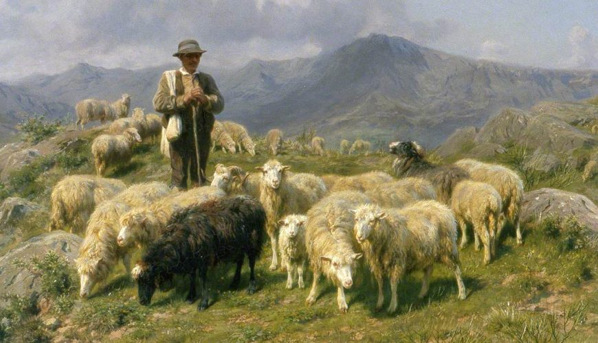 Mother America…the Shabby Shepherd