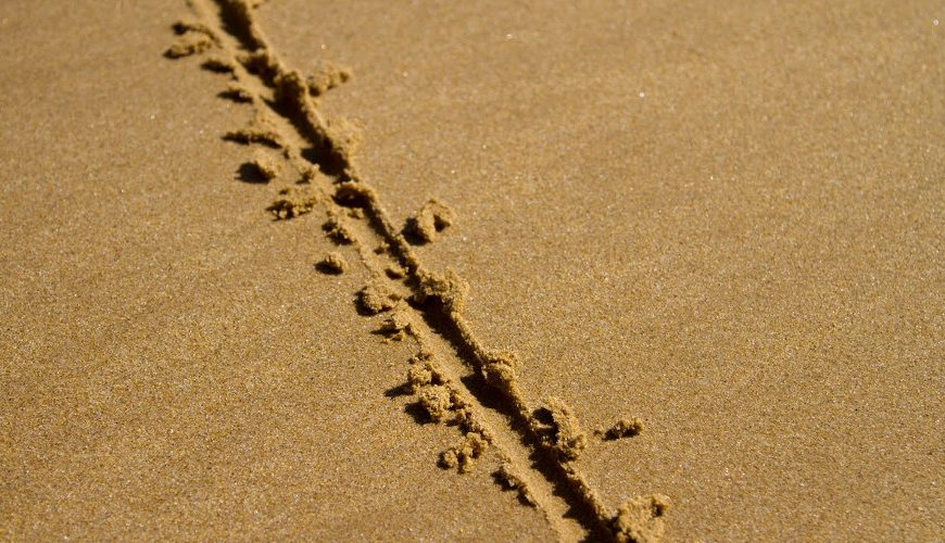 Op-Ed: What is YOUR Line in the Sand?