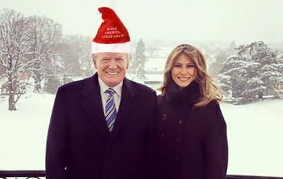 Our Political Twist on 'Twas The Night Before Christmas