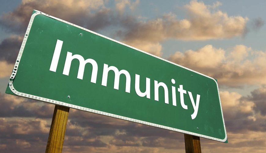 Cover Your Assets – Gov. Little's Immunity Plea
