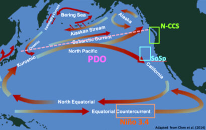Practical Solutions For Salmon Passage